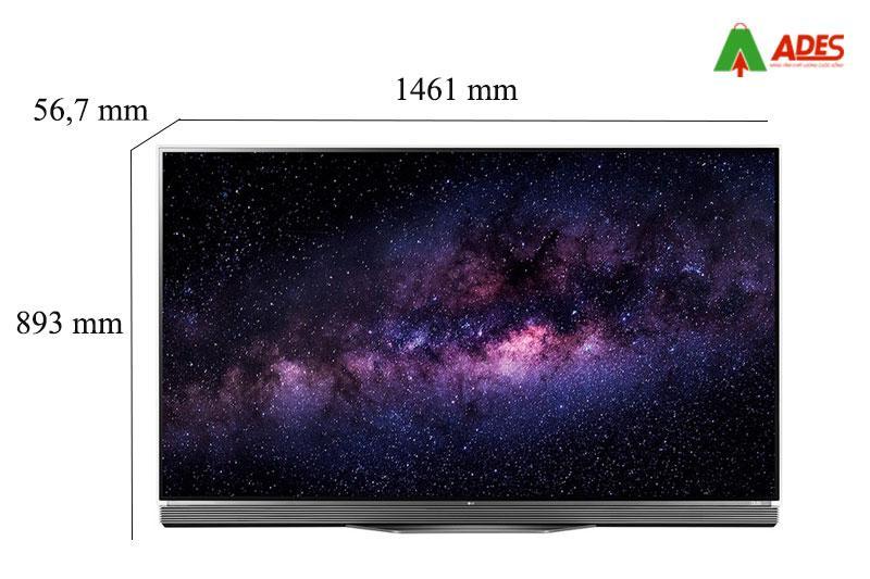 Smart Tivi OLED LG 65E6T, 4K, HDR